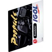 Igol Propuls Roadster 4T 10W40 bidon de 2 litres LUB4TRD10W40